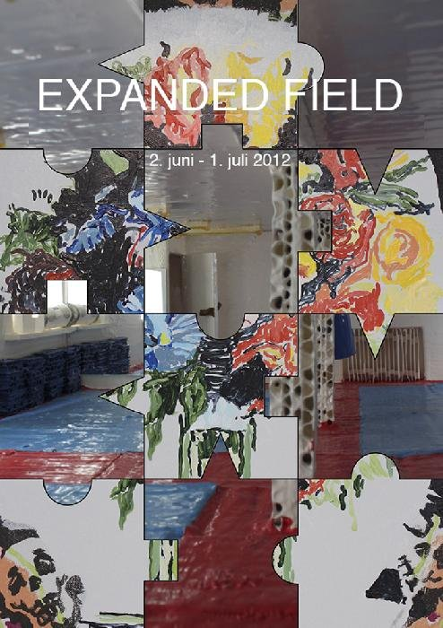 EXPANDED FIELD  Lars Heibergs 274211296